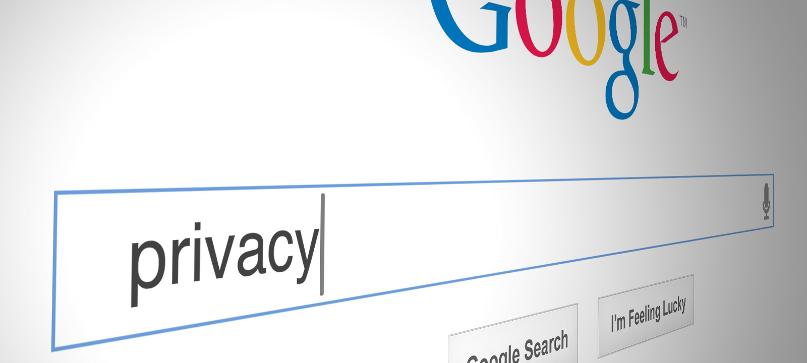 http://www.privacyofficertoscana.eu/wp-content/uploads/2014/05/google-privacy.jpg